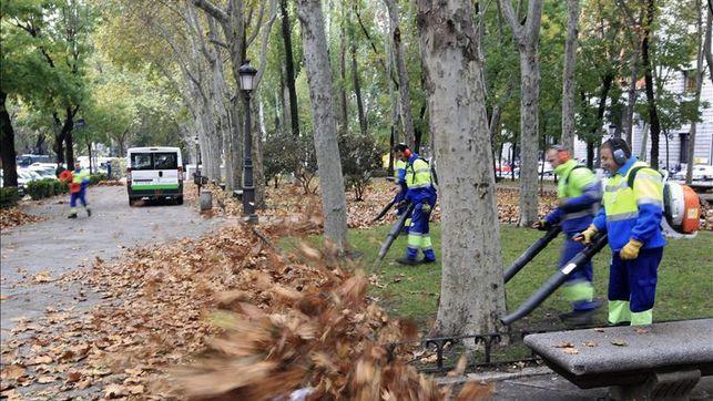 Madrid es una ciudad hoy más limpia